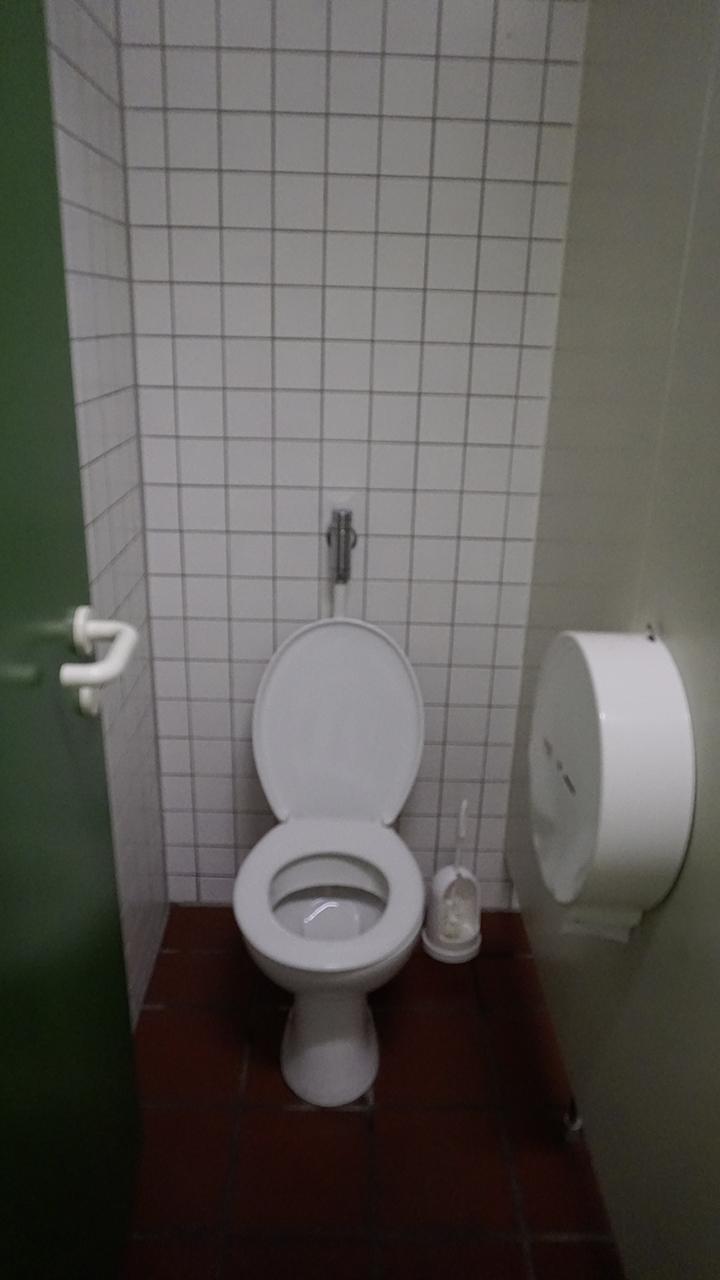 Vorher - WC-Kabine